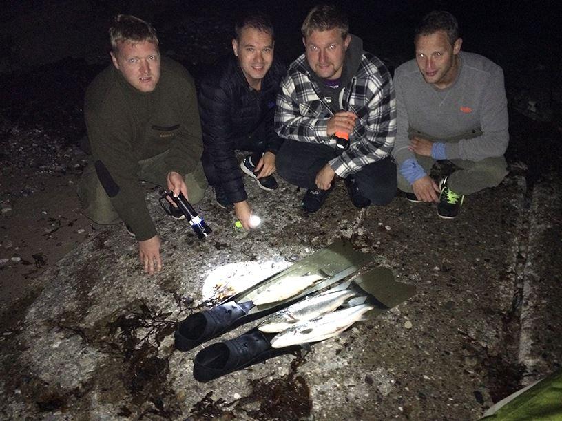 Undervandsjagt efter havørred om natten