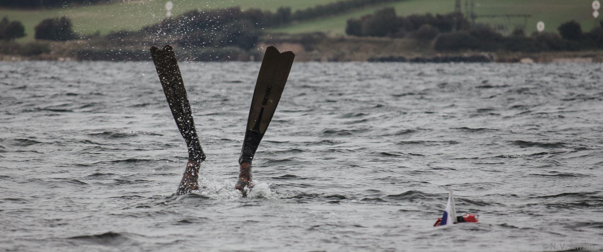 Nachtjagd mit Harpunen für Meerforelle