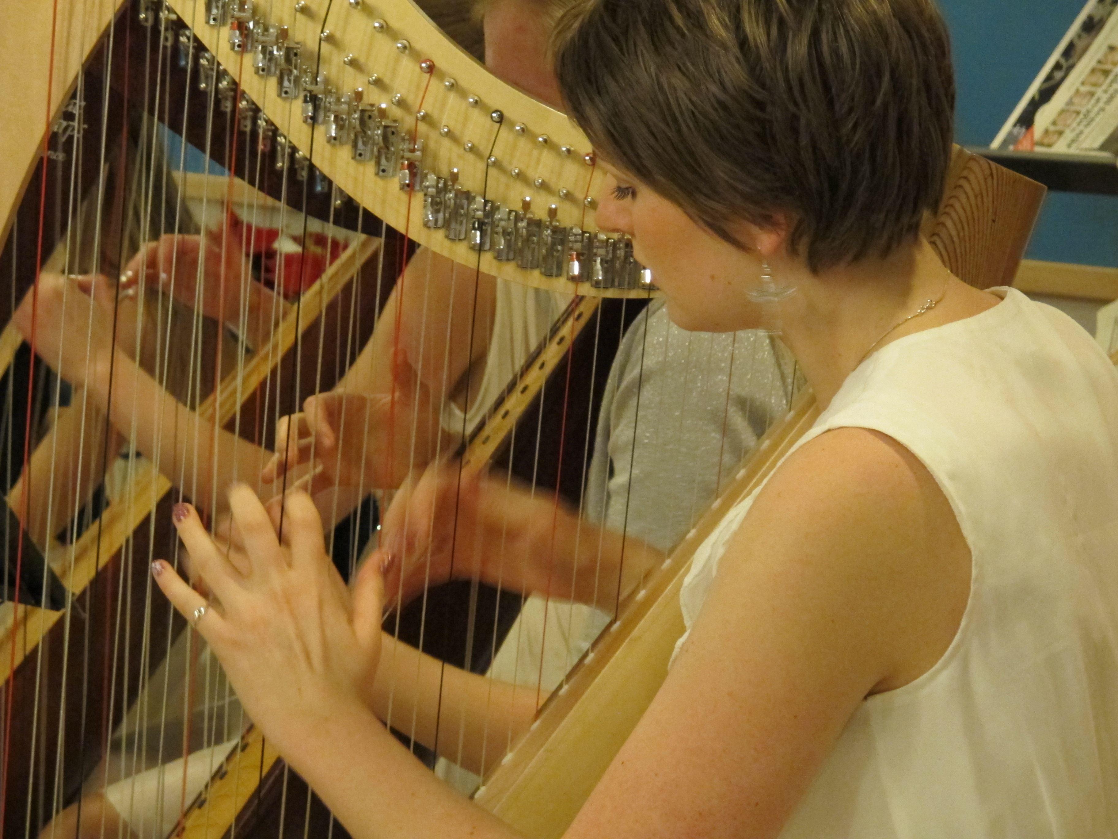 Folkmusikkonsert