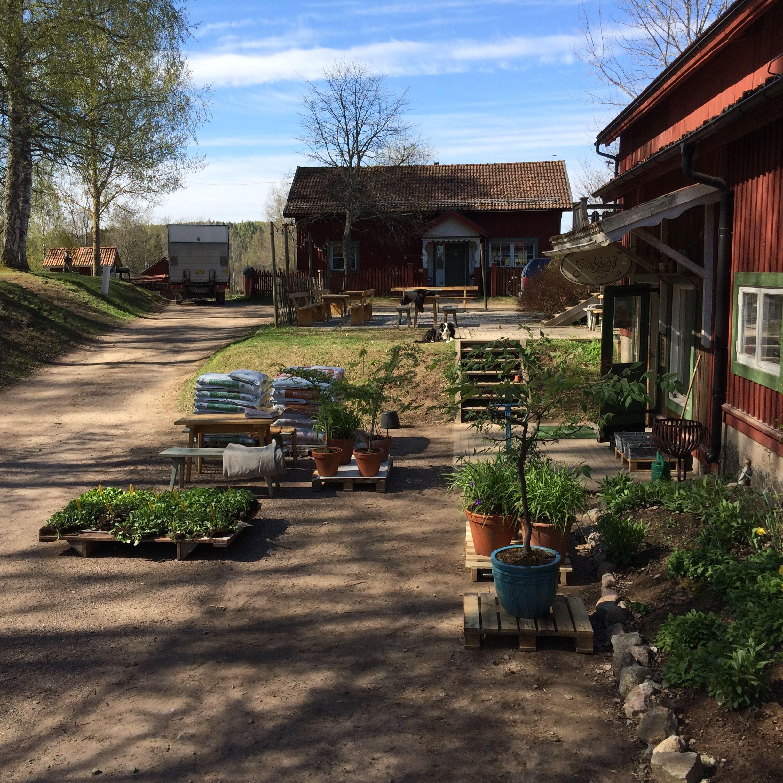 Höstmarknad på Wålstedts gård