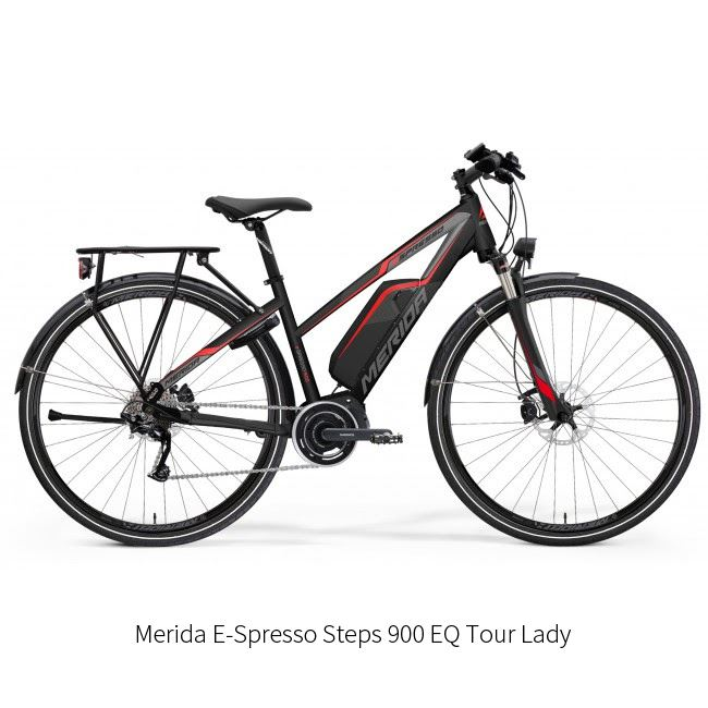 204. Electric Touring Bike Rental