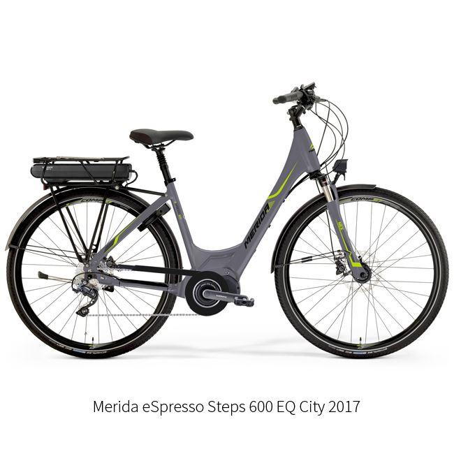 204. Electric Bike Rental