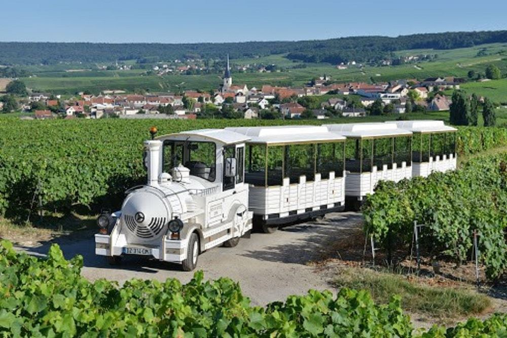 The tourist train of the Champagne vineyards