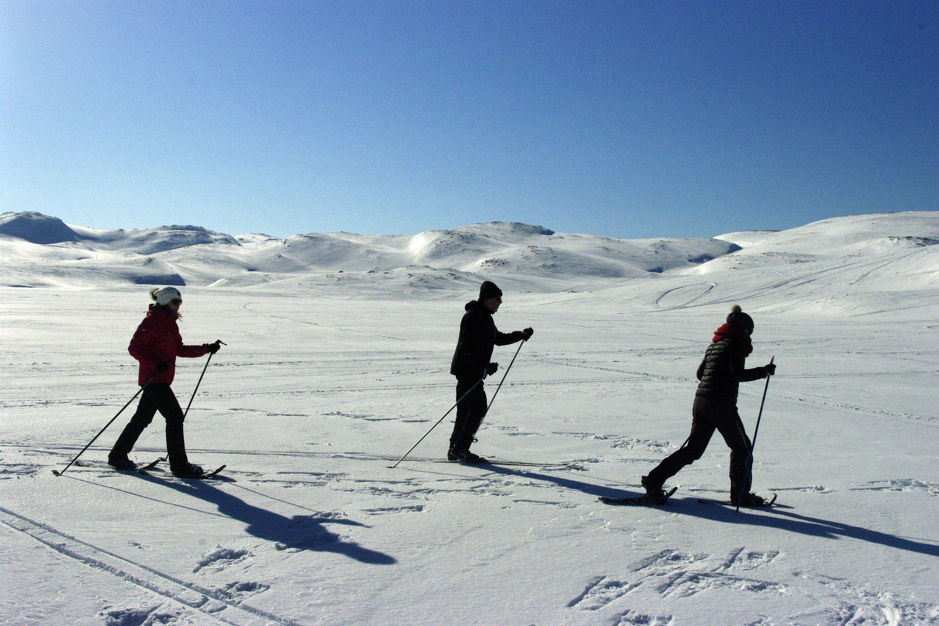 Snow play and aurora chase in BaseCamp NorthCape