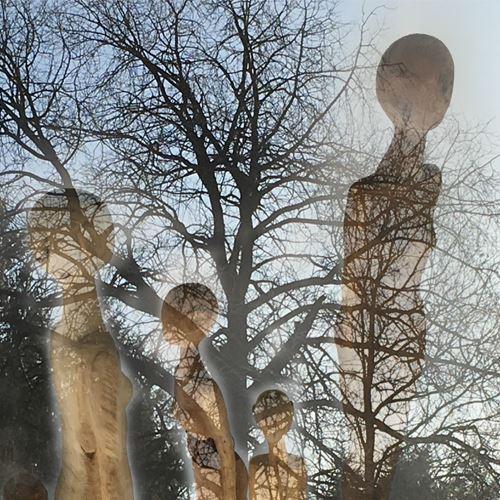 Utställning - Susanne Demåne - Människan och trädet