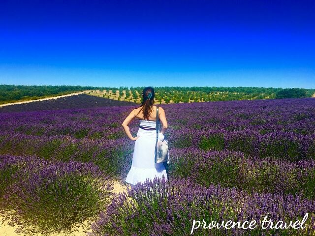 Lavender Tour H1 half day