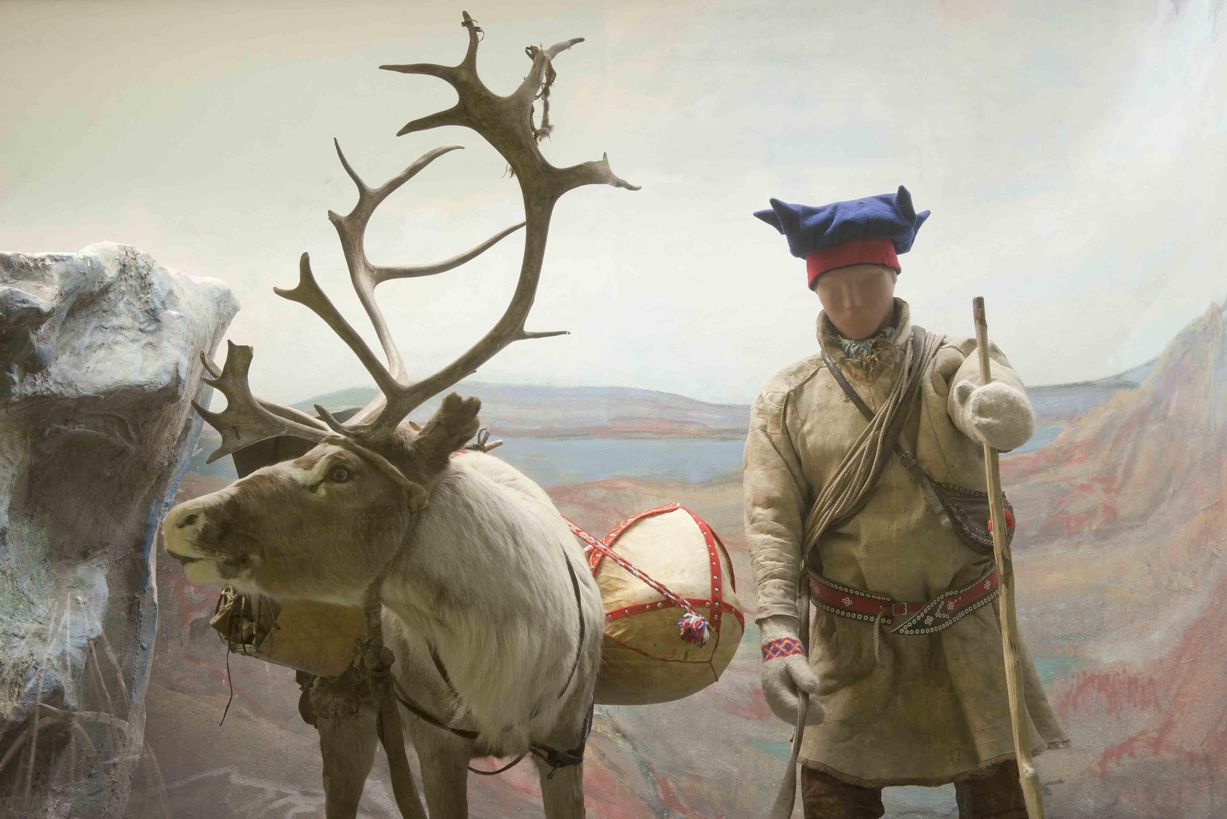 Sami Culture and Camp Visit