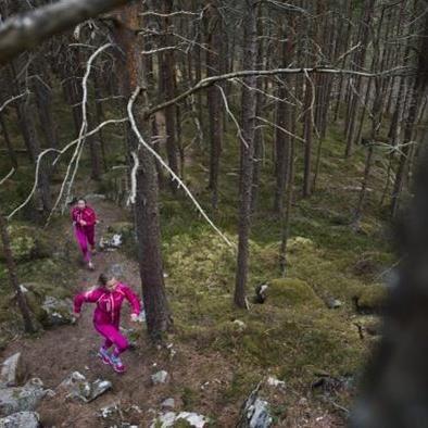 Vandra & Yoga med Systrar i Bergen