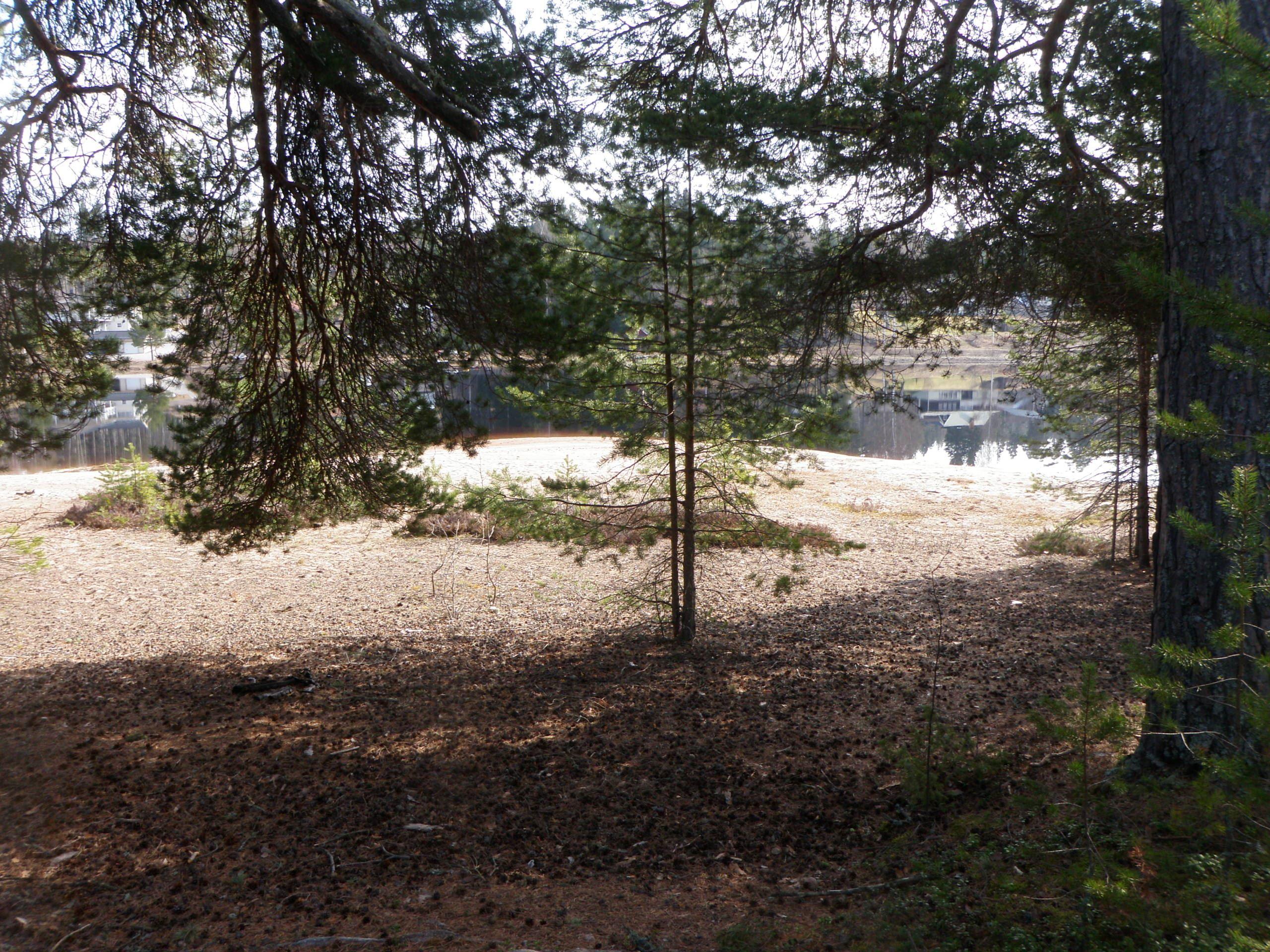 Sandängsturen/Golfrundan, Mora - vandringsled
