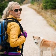 Hundtränarläger med Hundsteg