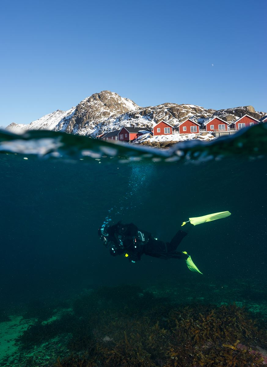 First time diver from Svolvær