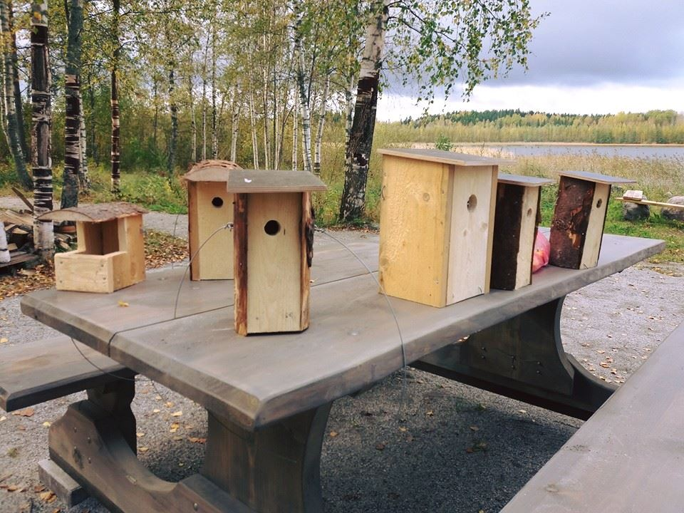 Your Own Birdhouse | Best Lake Adventures