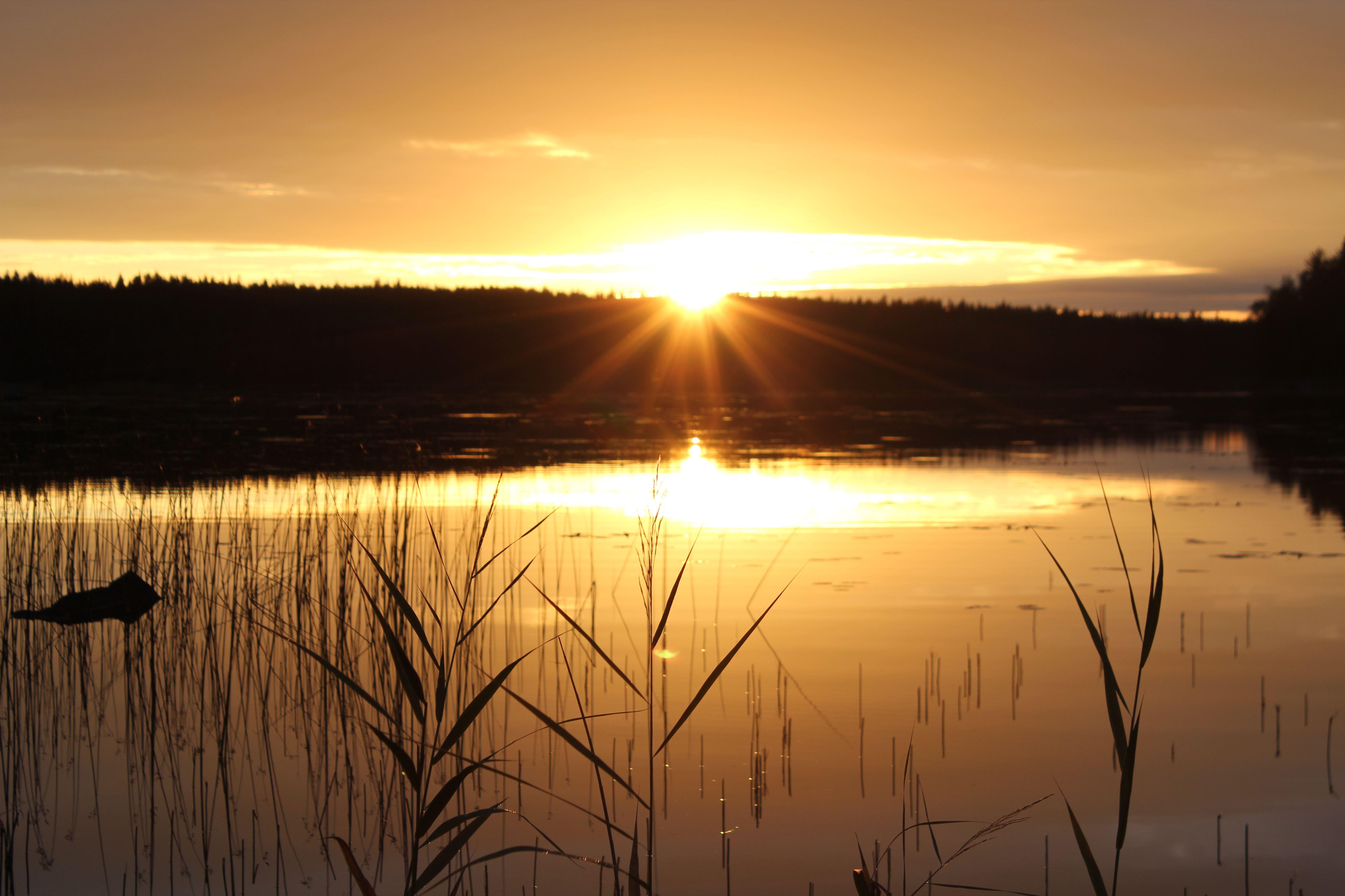 Kesäyön hiljaisuus | Best Lake Adventures