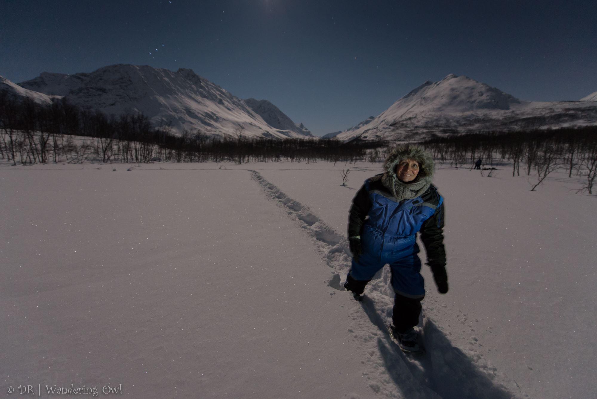Star Walk – a night snowshoeing tour – Wandering Owl