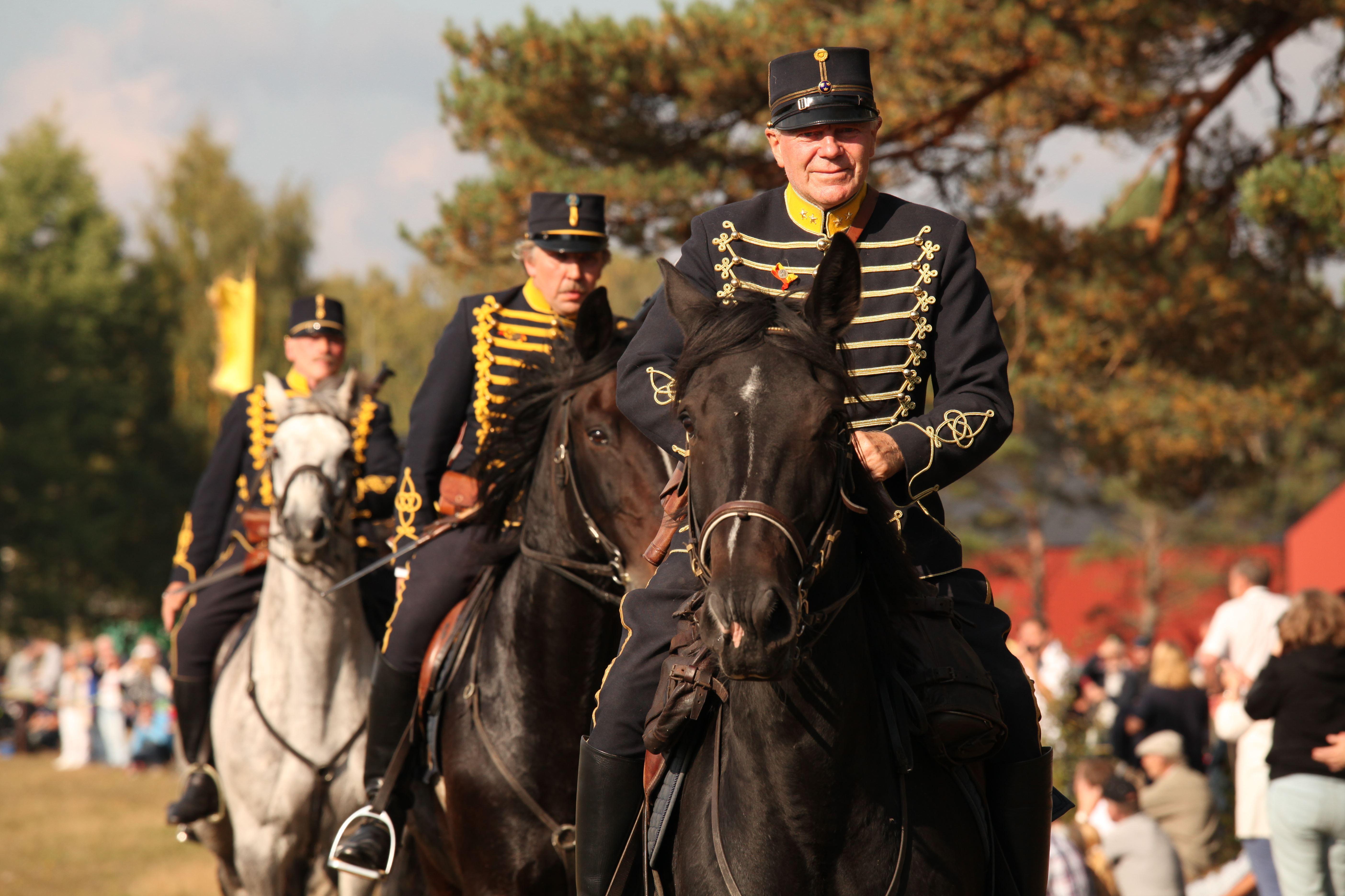 Sveriges Militärhistoriska dagar