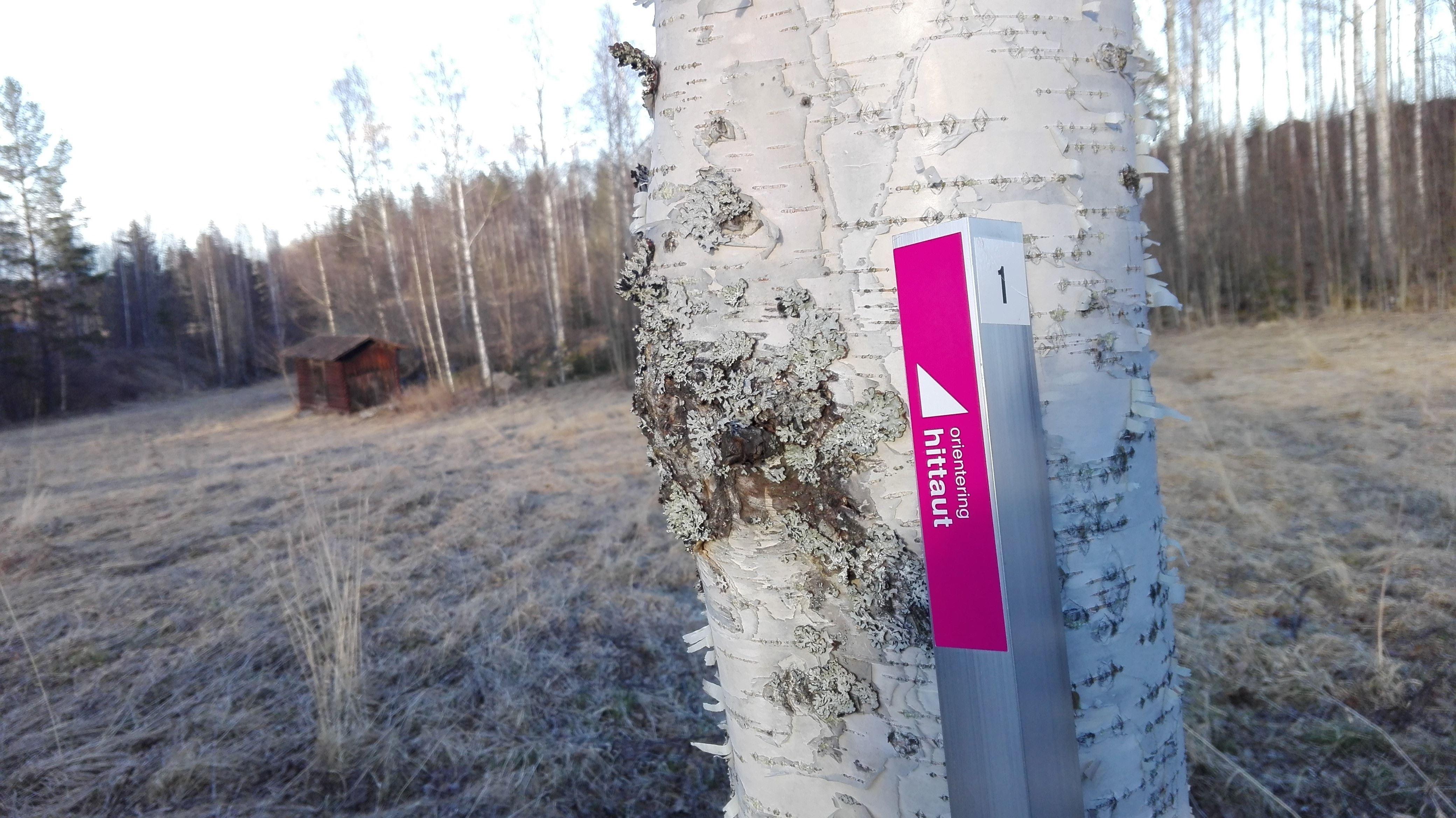 Hittaut Hudiksvall
