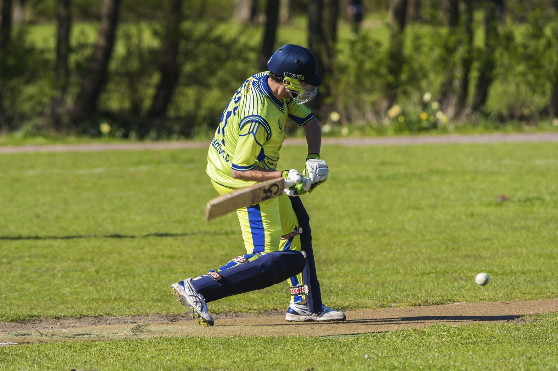 Cricket herrar div 1