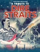 A tribute to dire straits - on the swedish night tour