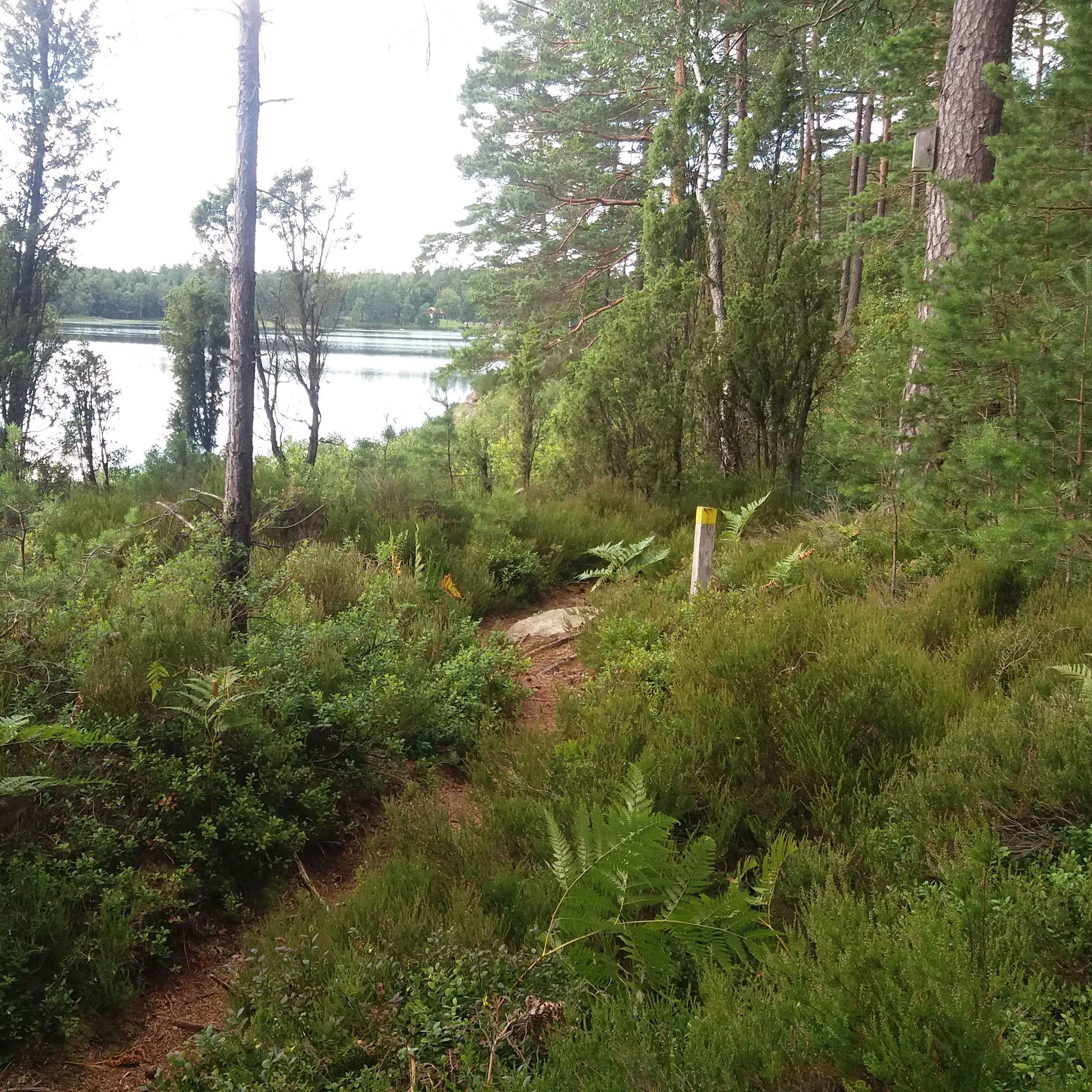 Hjärtasjöstigen - Hiking loop 3 km