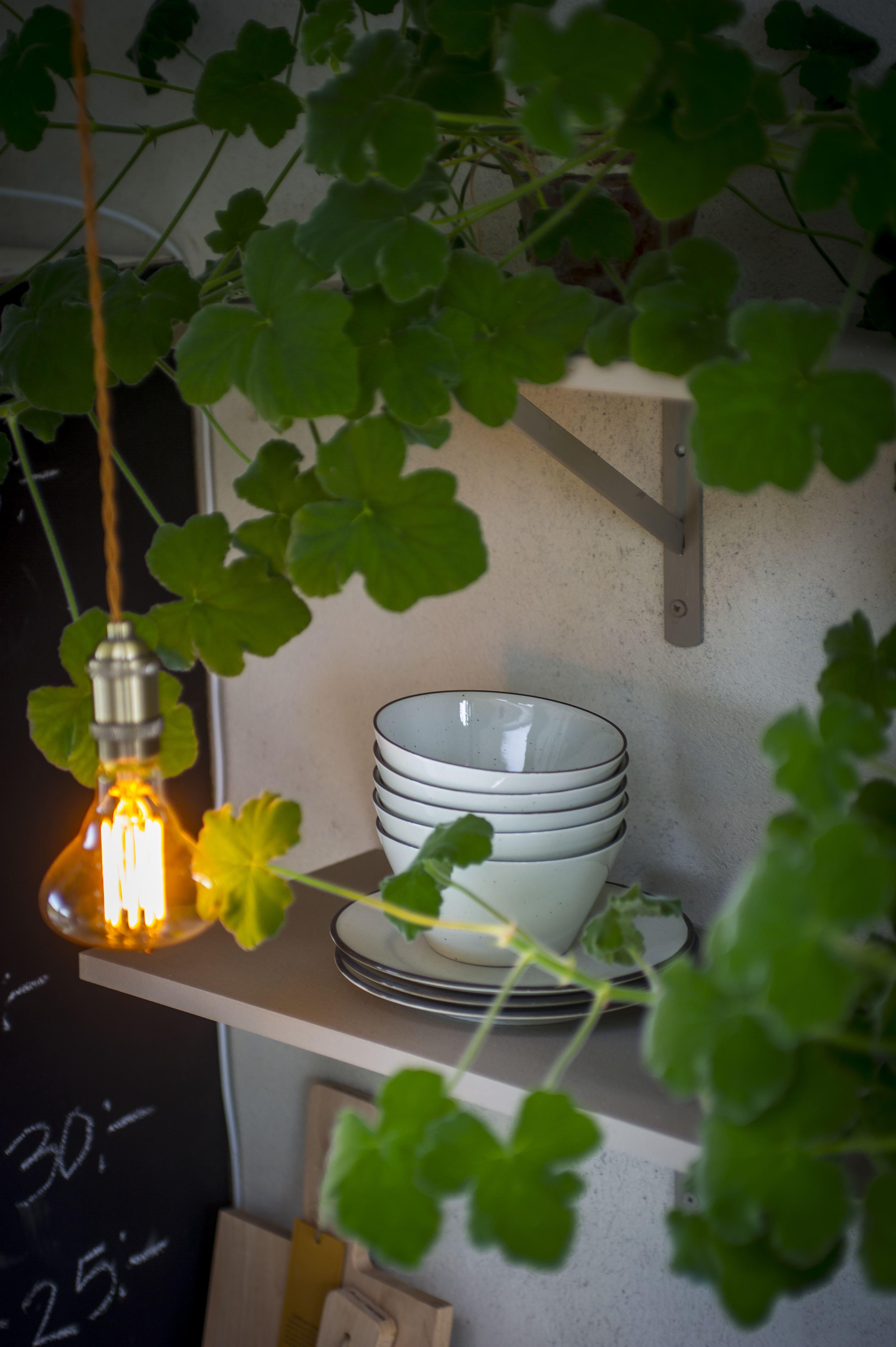 Månses Trädgårdscafé och Butik