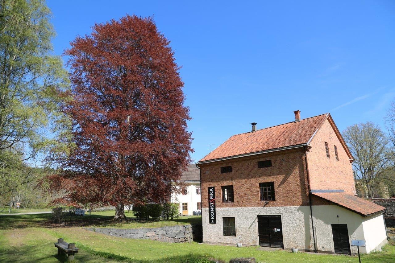 Ståtligt Blodboksträd i Edsbruk