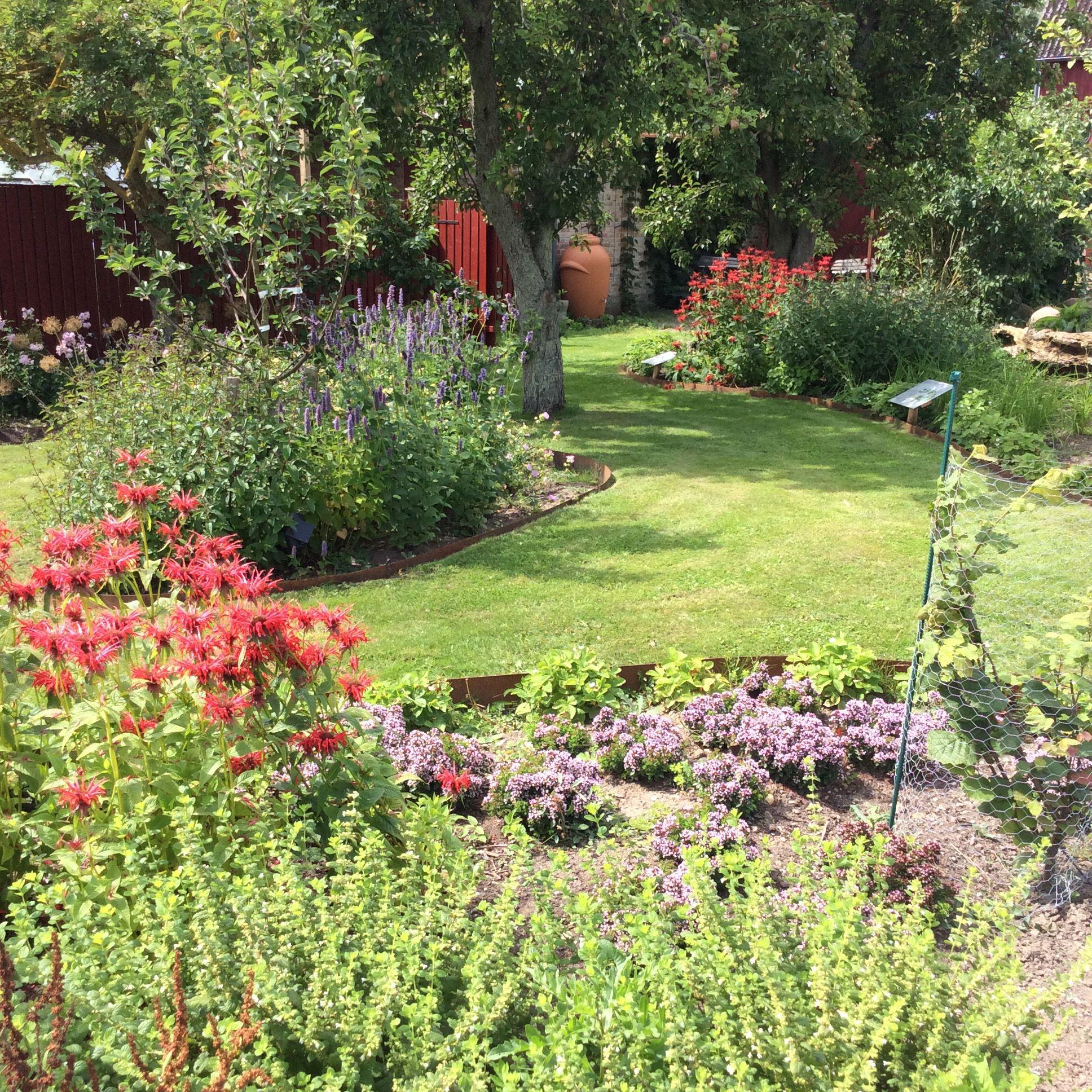 Permakultur design-skogsträdgård