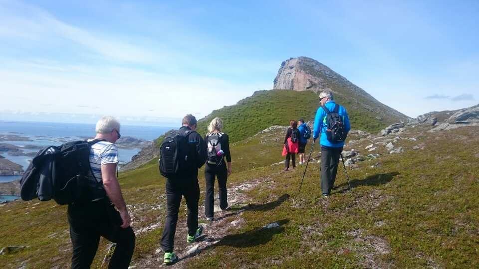 Guidet tur til Rødøyløva (440m)