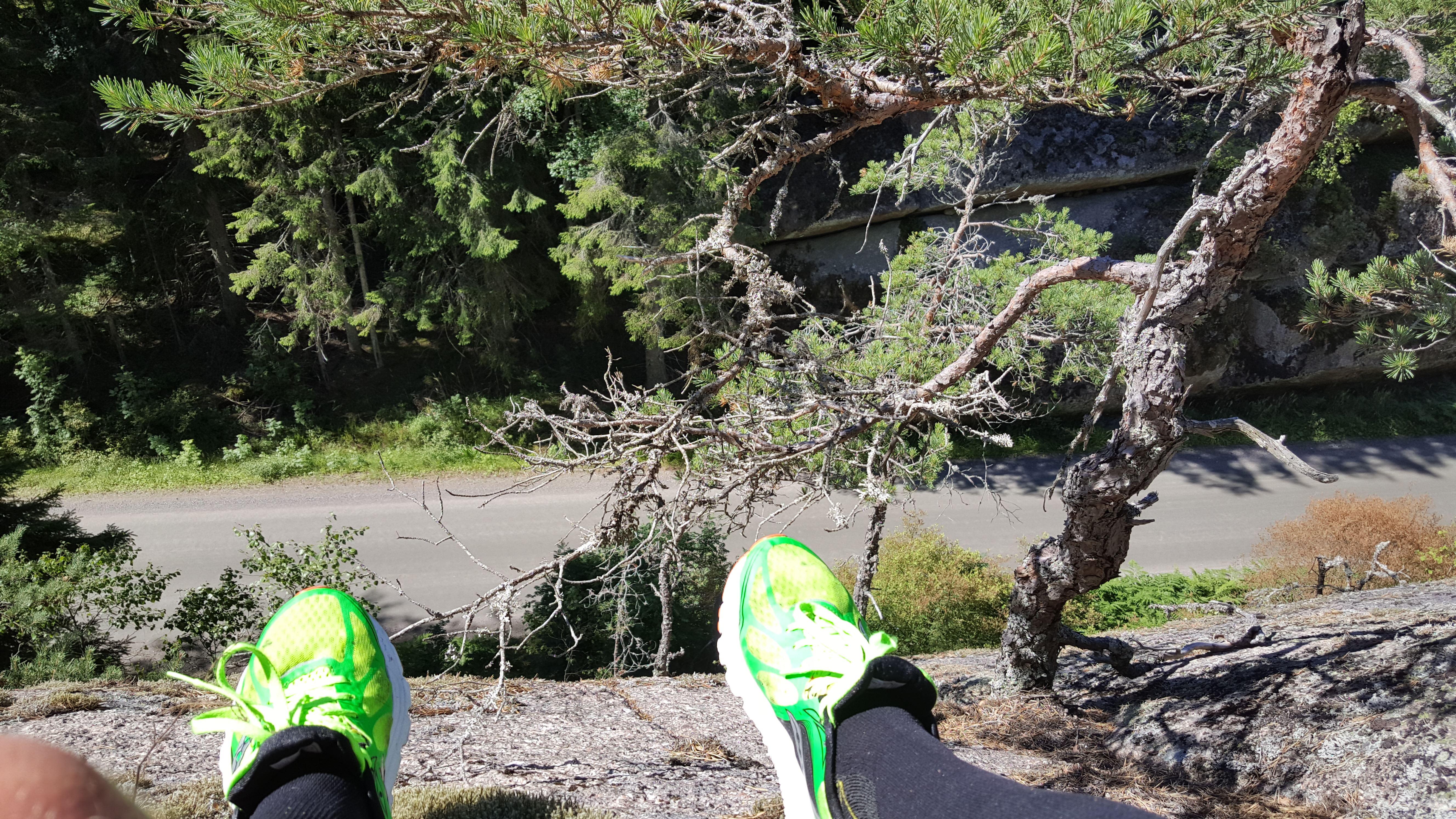 Prova på traillöpning