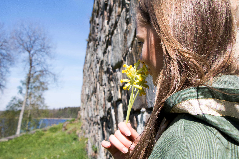 © Vetlanda Infocenter, Hultaby Slottsruin