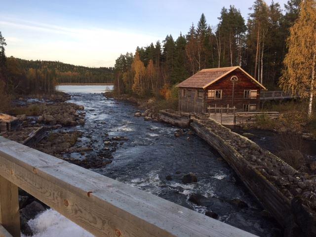 Lena Forsberg, Tullkvarnen