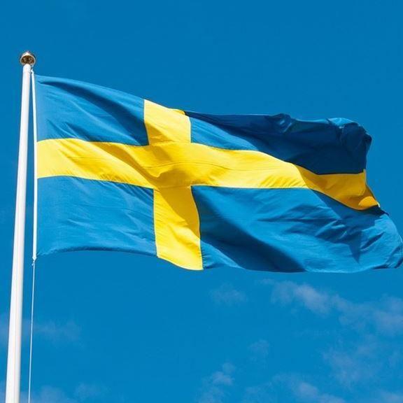 Fira Sveriges Nationaldag i Sandviken
