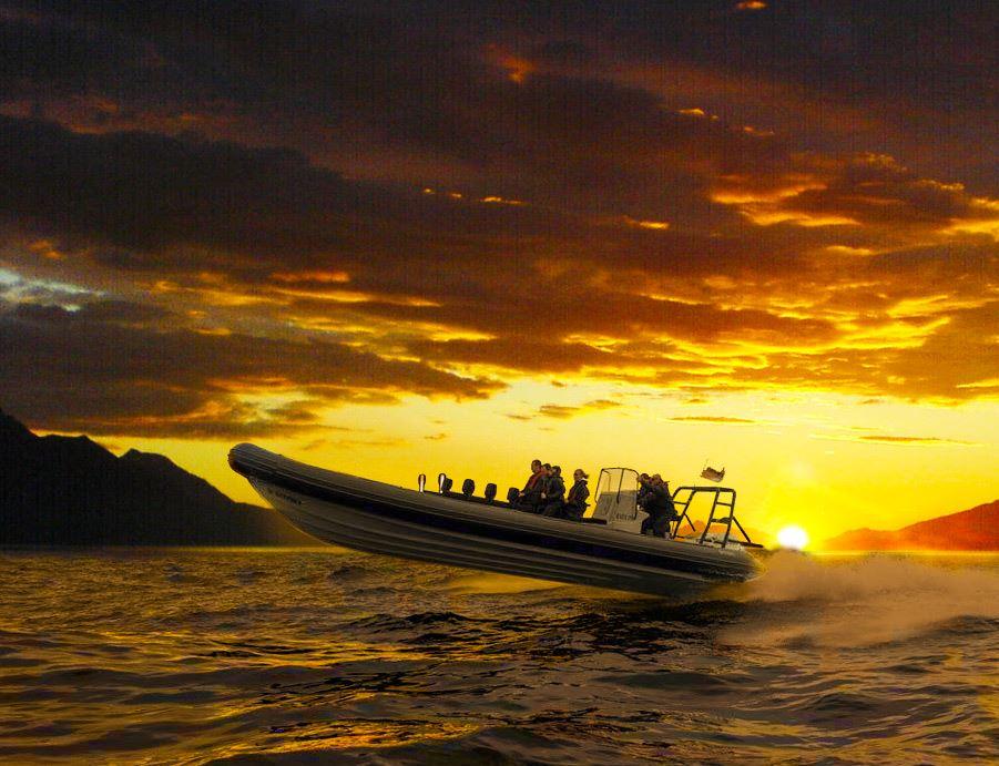 Lyngen Adventure,  © Lyngen Adventure, RIB boat fjord tour