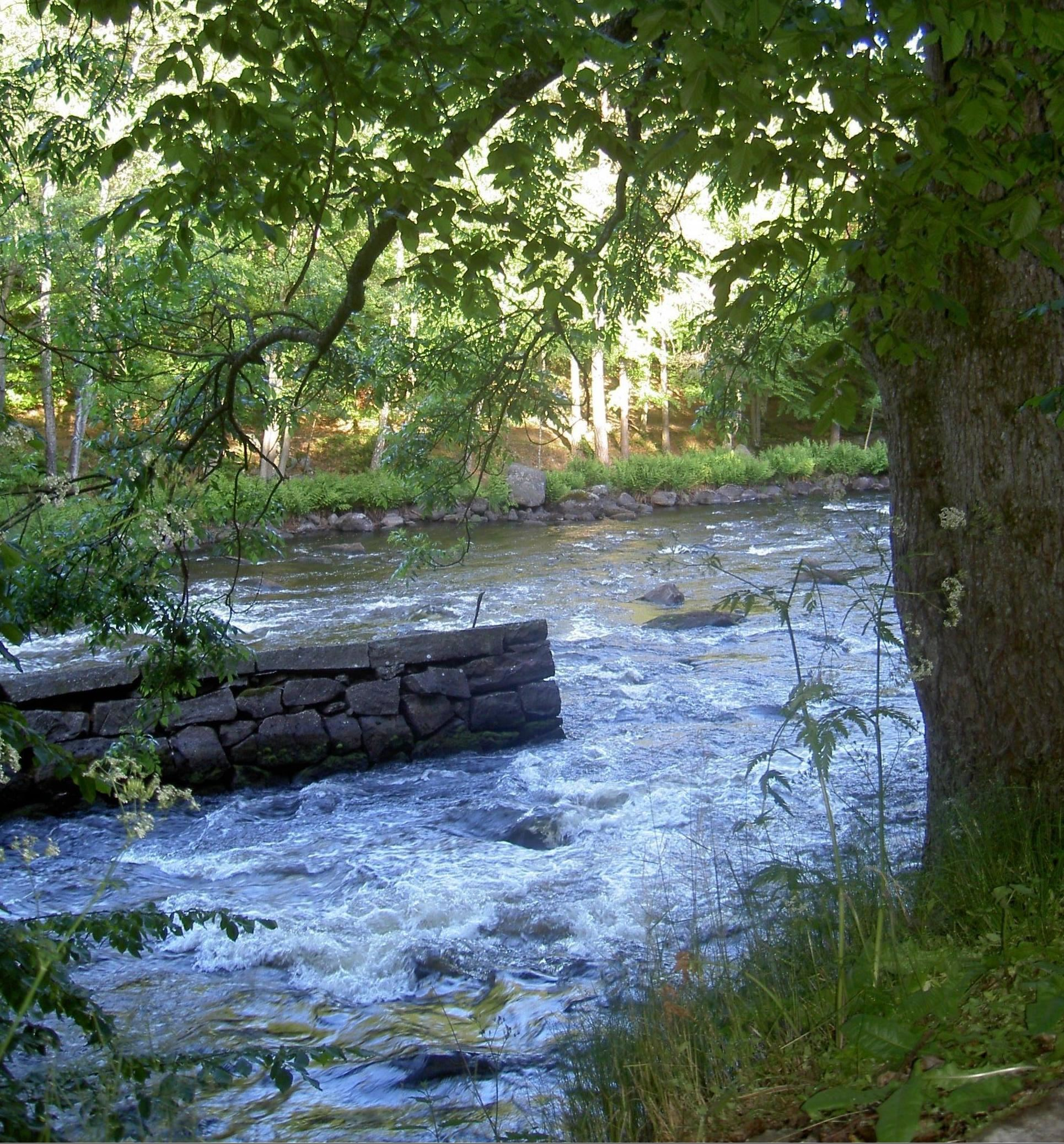 Walking trail - Mörrum river