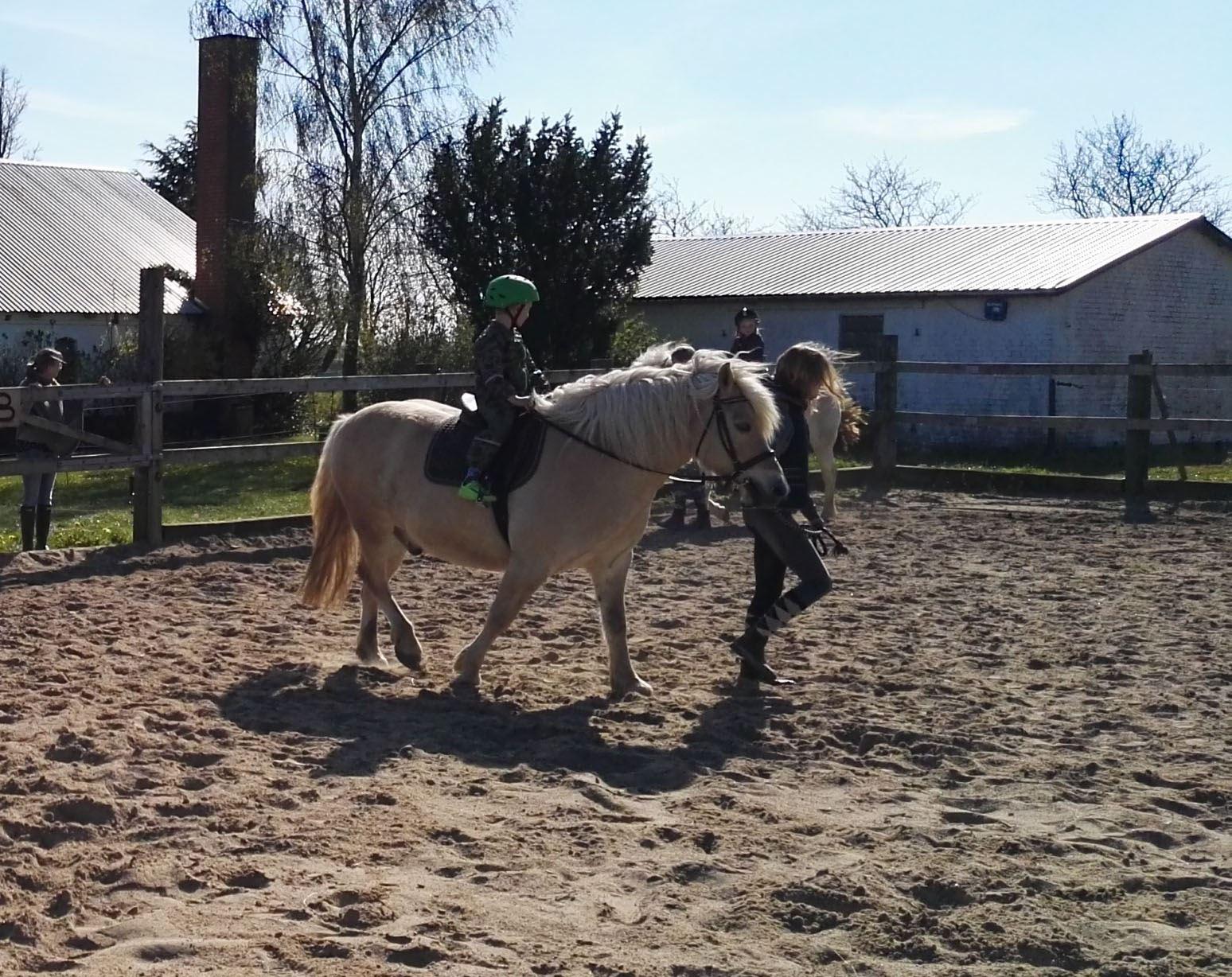 Trækketur på hest