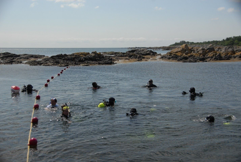 Kystdyk i Nexø med guide