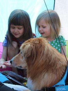 Läsa för hund