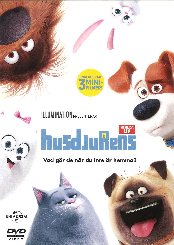 Sommarlovsfilm - Husdjurens hemliga liv