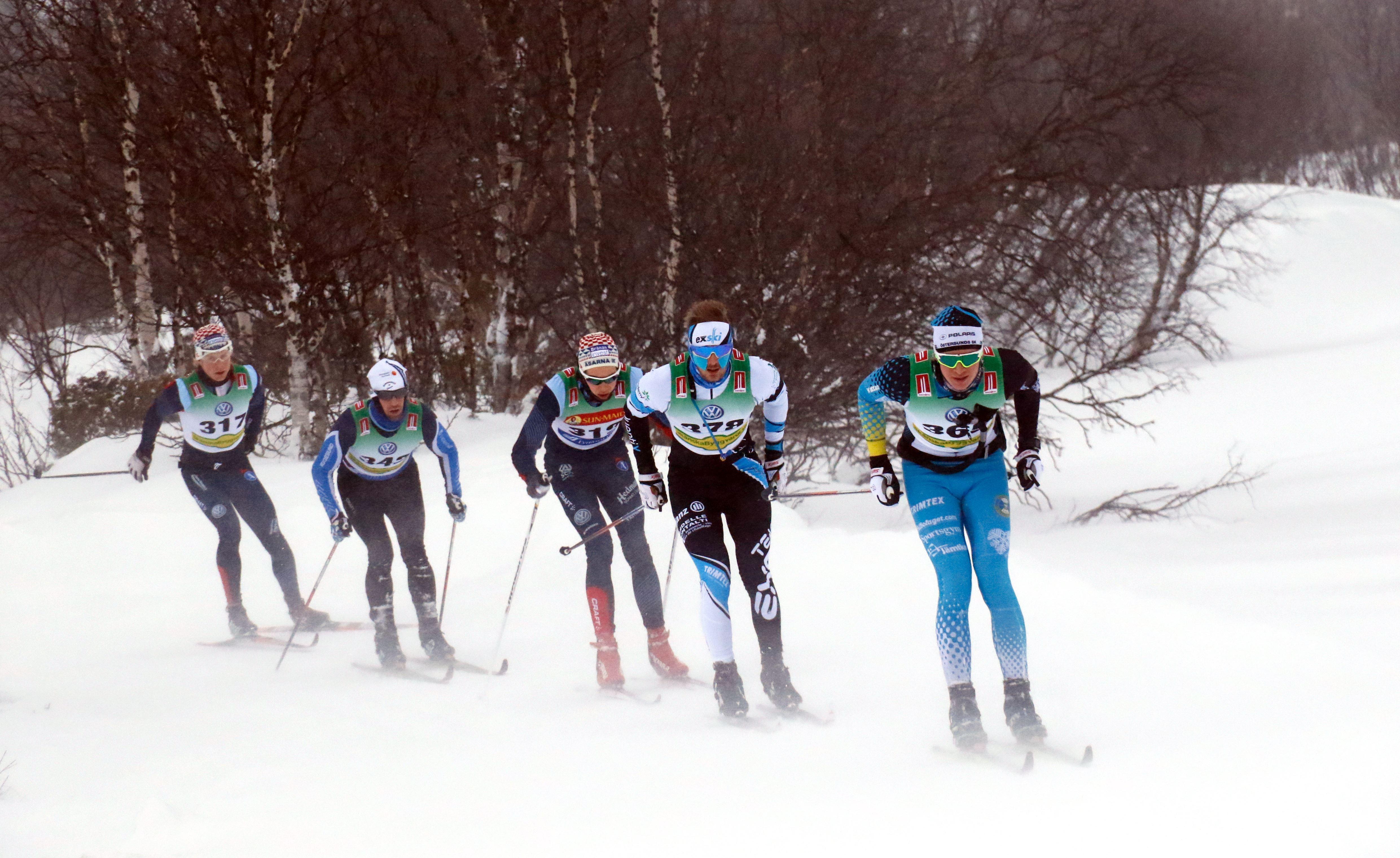 Jan Eriksson, Bruksvallarna Nordic Ski Marathon