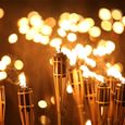 Evening torchlight tour