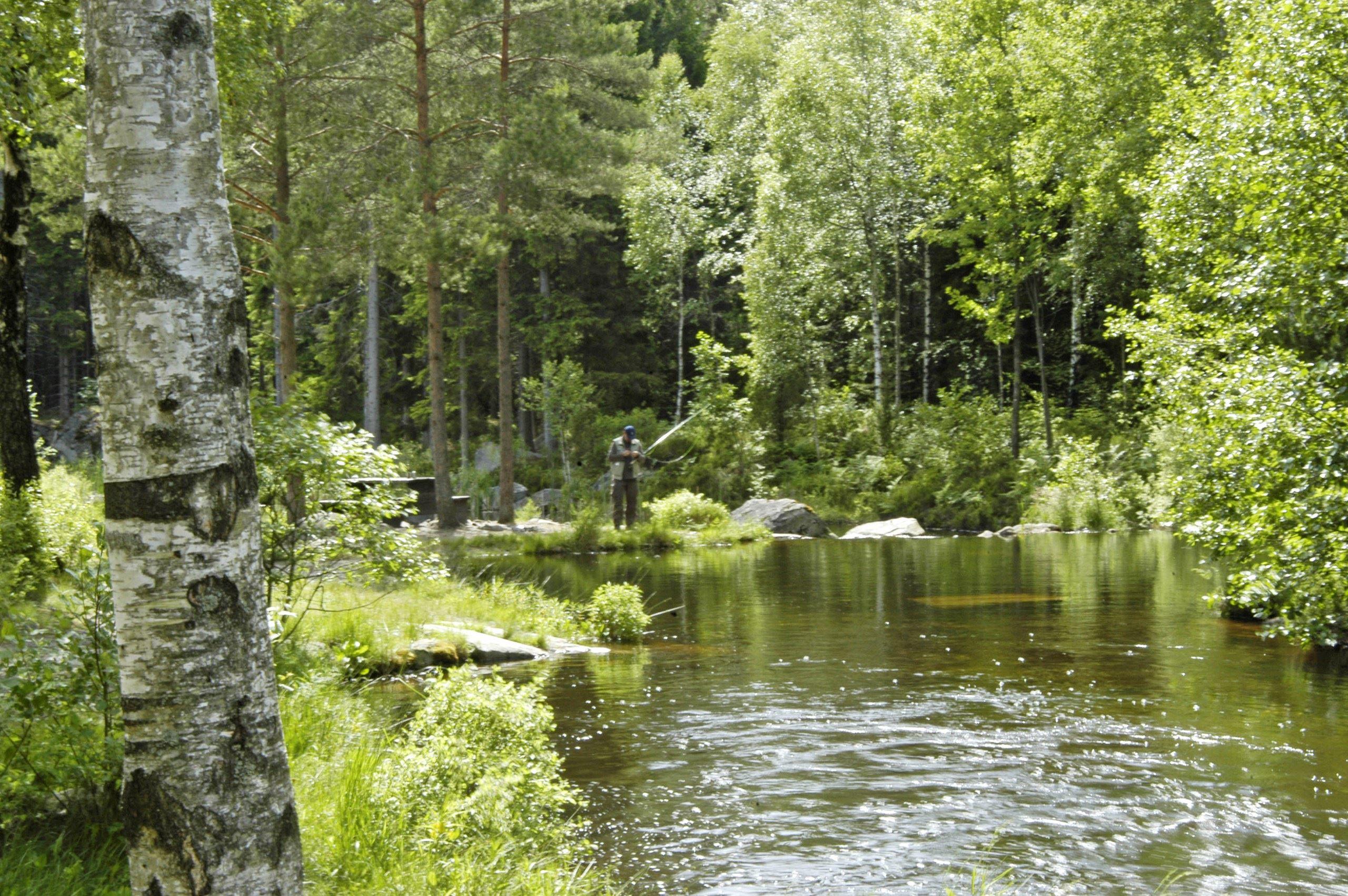 Fiskekort Vesslarpssjön