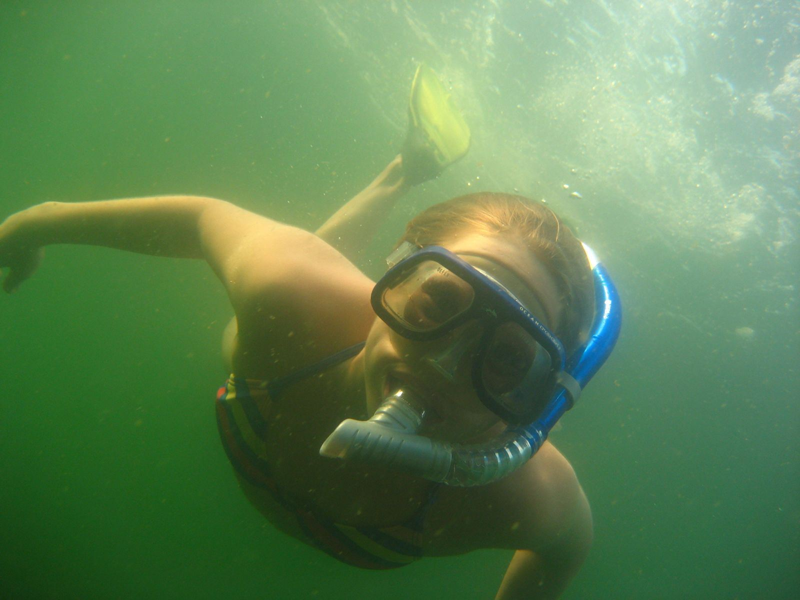 Mitt hav - Snorkelsafari