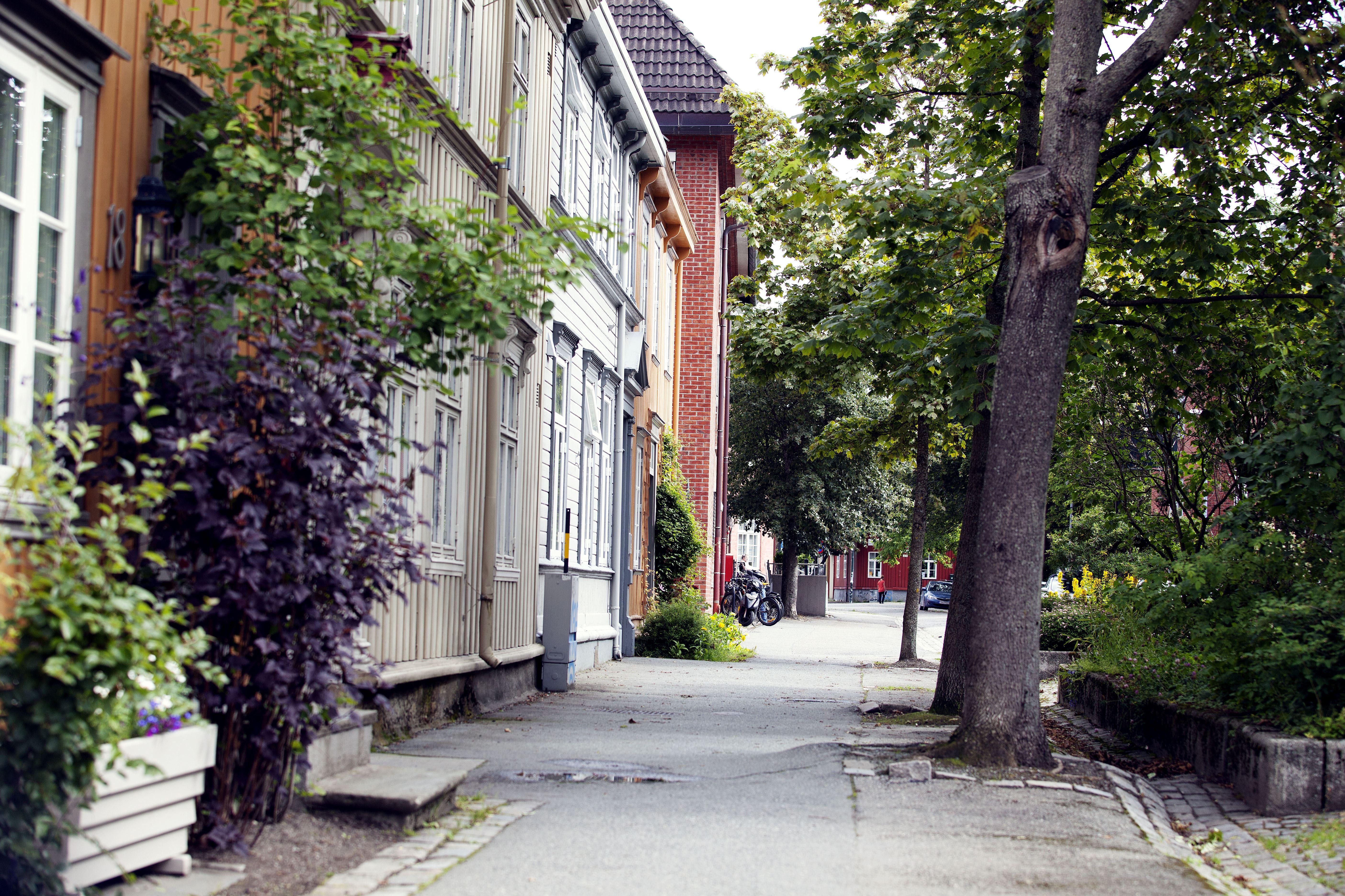 Tom Gustavsen/Visit Trondheim, Hospitalsløkkan area