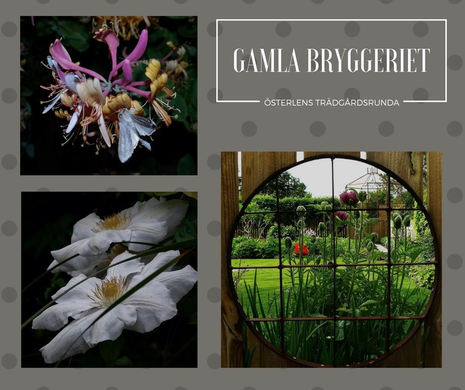Gamla Bryggeriet - Smedens trädgård