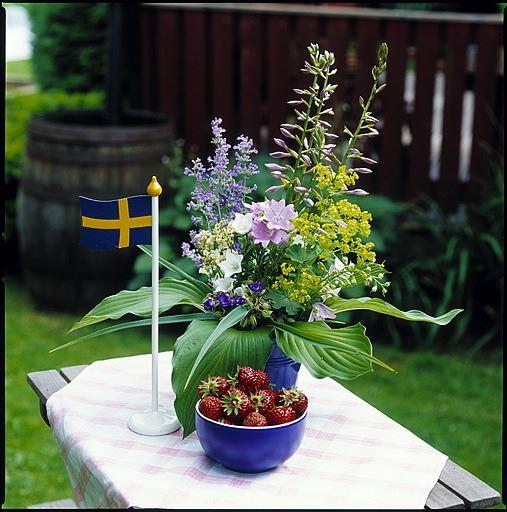 © Foto, Sven Persson/swelo.se , Midsummer celebrations – Vinslöv