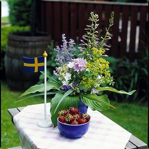 © Foto, Sven Persson/swelo.se , Midsommarfirande i Norra Sandby