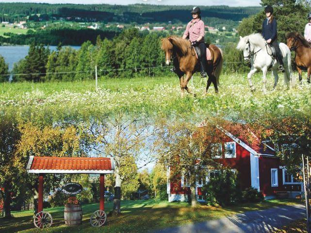 Foto: Sörbygården,  © Copy: Sörbygården, Boende och ridning vid Sörbygården