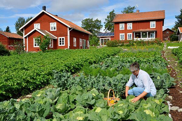 Foto: Framgården,  © Copy:Framgården, Boende i sommarmiljö