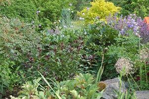 Johnérs Trädgård - Öppen Trädgård