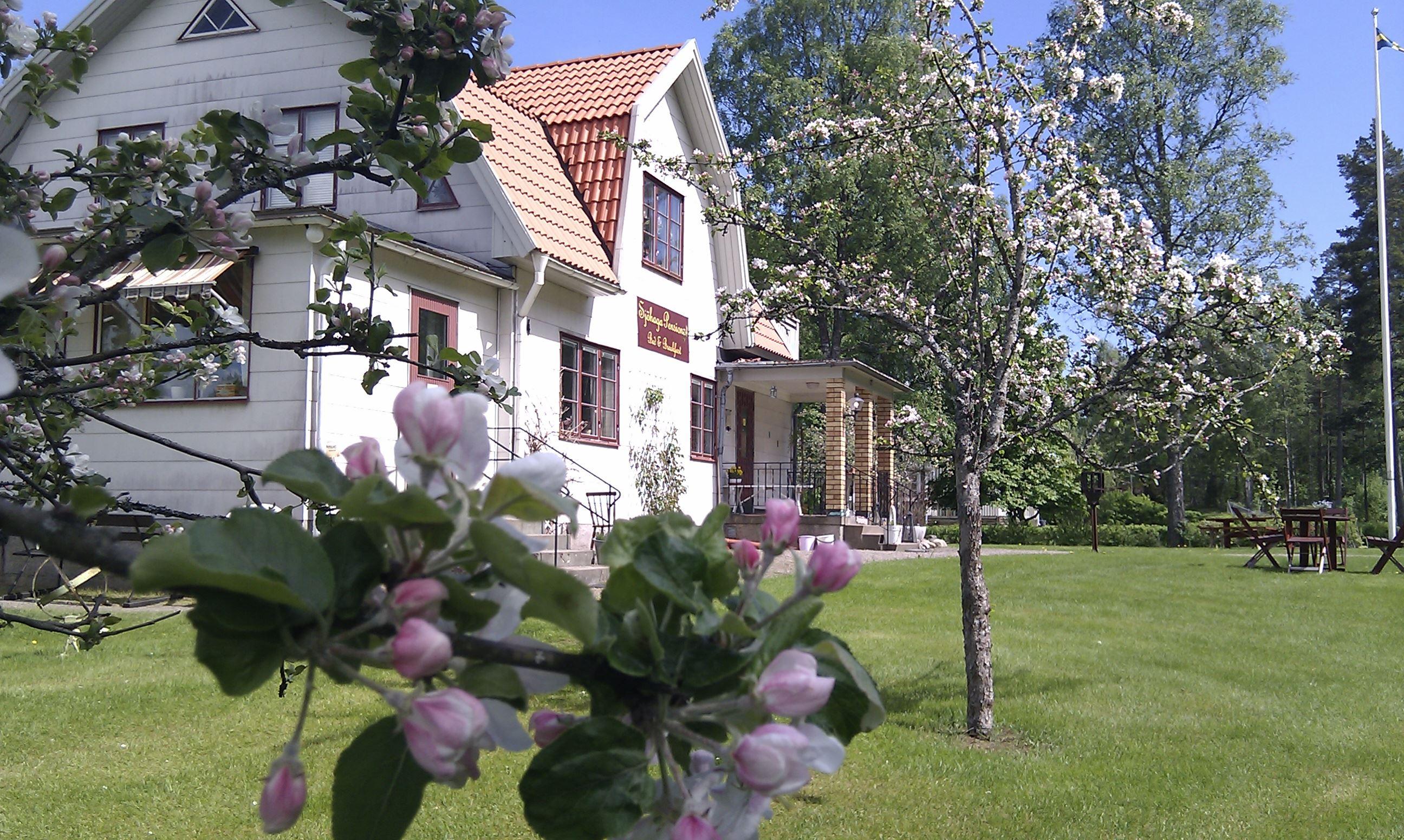 © sjöhaga pensionat, Sjöhaga Pensionat (copy)