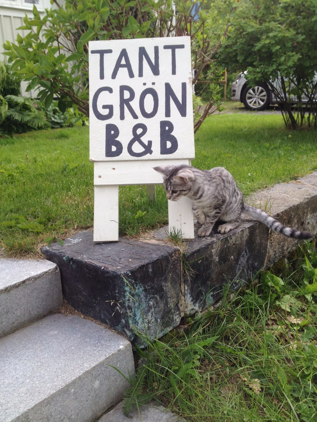 Tant Grön Bed & Breakfast
